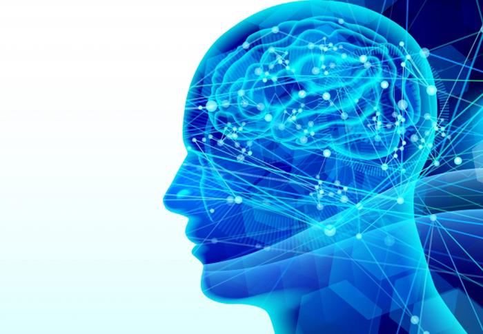 思い込んだ脳からの解放